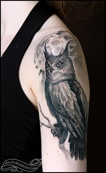 Tattoos - Owl - 65719