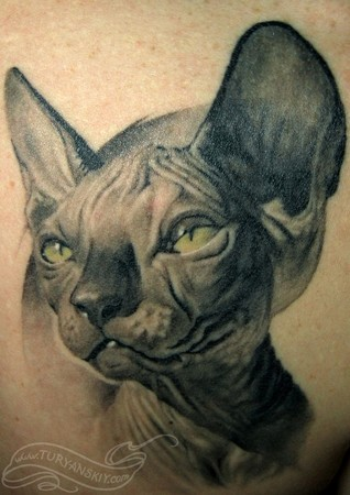 Tattoos - Skinny hairless cat - 46758