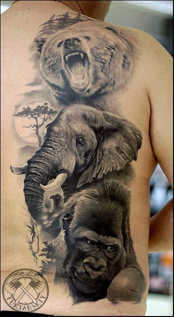 Tattoos - Wildlife portraits - 100727