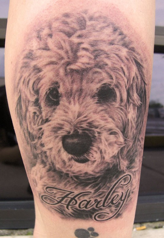 Tattoos - Dog Portrait - 38196