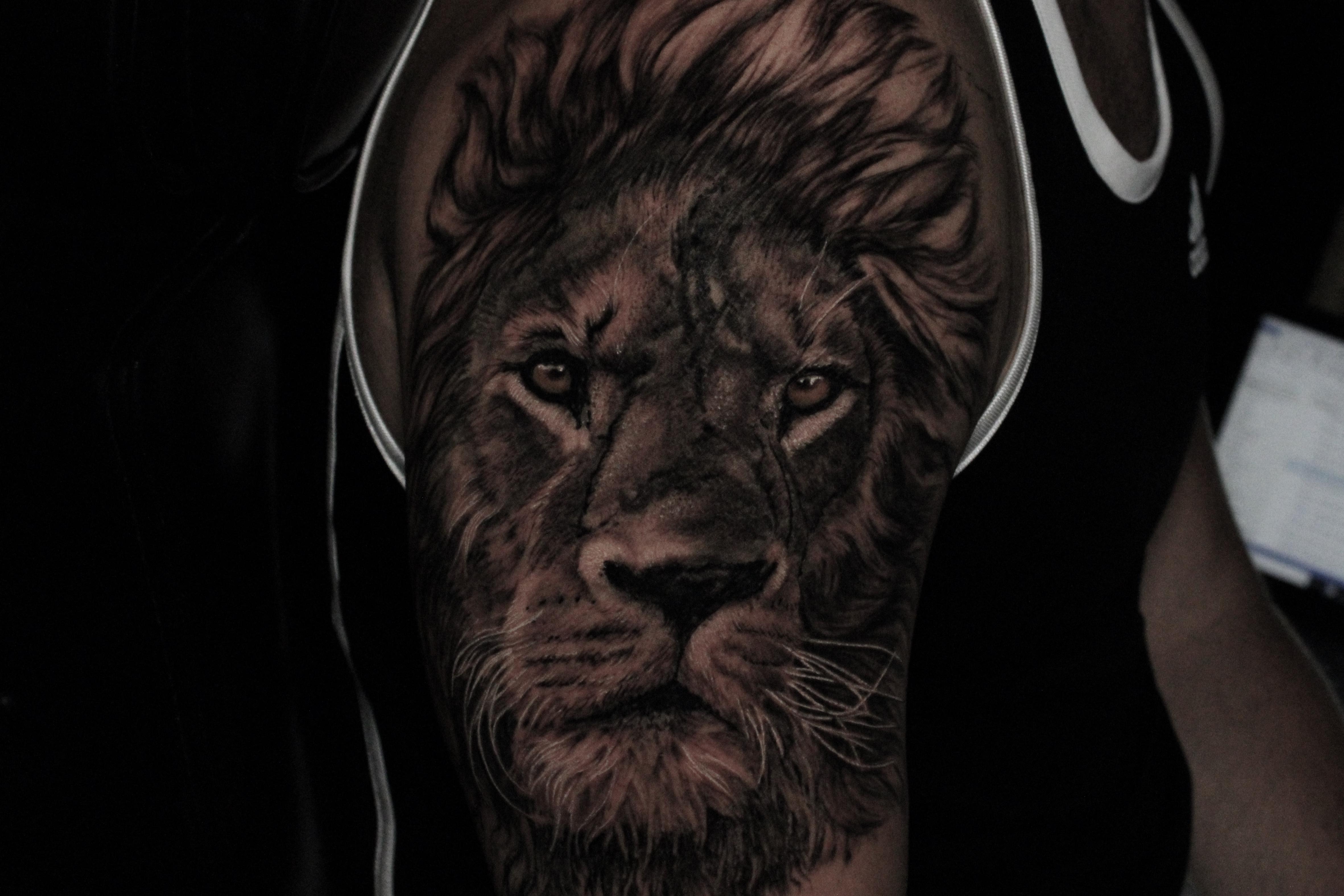 Tattoos - Lion - 141811