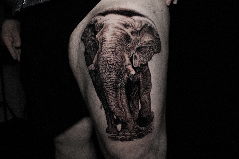 Tattoos - Elephant - 141447