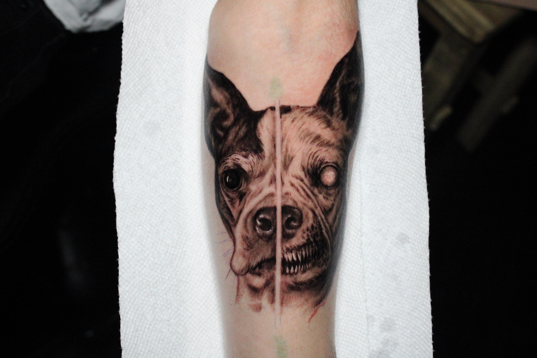 Tattoos - Evil dog - 141710