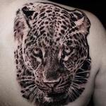 Prints-For-Sale - Leopard - 141457
